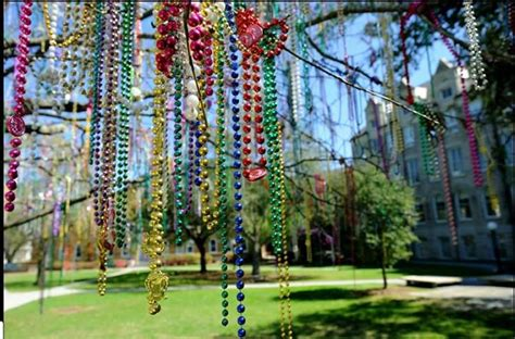 mardi gras bead tree mardi gras our insiders guide to getting the best throws