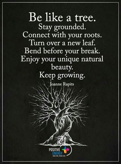 17 best tree quotes on quotes on trees