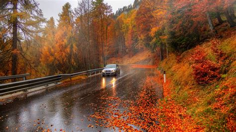 1600 X 900 Car Wallpapers by Autumn Trees Road Car Alps Italy Wallpaper 1600x900