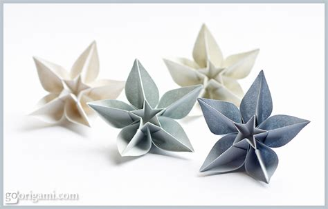 Carambola Flowers Origami Flowers By Sprung Go