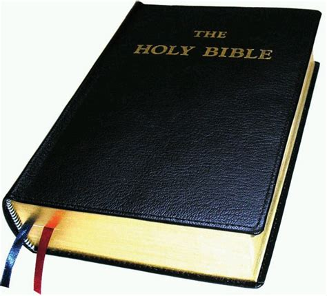 bible book pictures douay rheims psalms and new testament