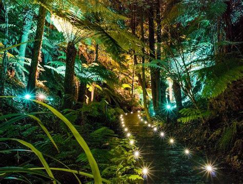 australian national botanic gardens canberra australian national botanic gardens away we go tours