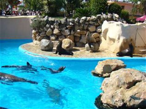 marineland antibes zoo at antibes parkscout de