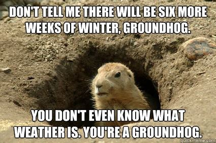 groundhog day you speak 8mm thoughts happy groundhog day happy groundhog day