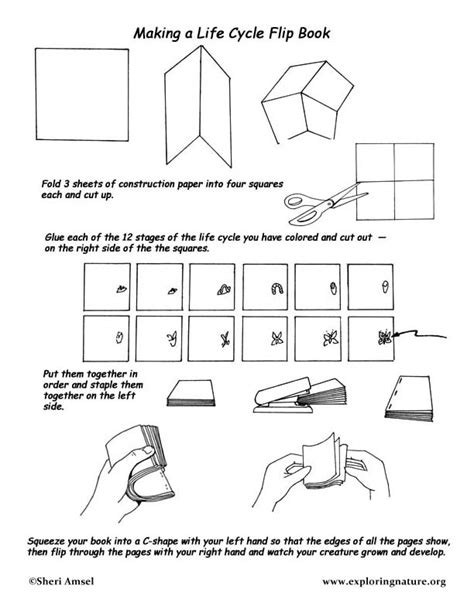 how to make a picture flip book cycle flip books