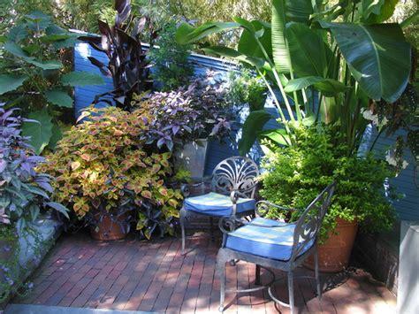 tropical garden design tropical patio other metro