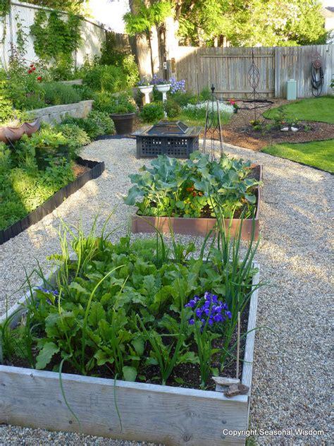 kitchen garden vegetables cool season veggies to harvest now