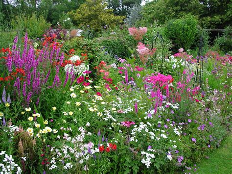 garden flower borders garden maintenance and landscape services in