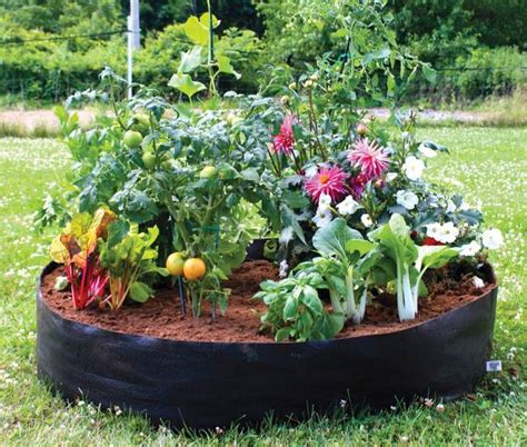 portable vegetable garden 3 lightweight fabric planters for easy portable container