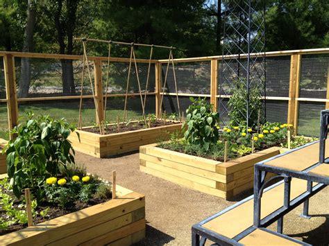 raised bed designs vegetable gardens beautiful backyard garden house design with wood raised