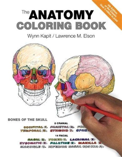 anatomy book with cadaver pictures anatomy textbooks shop for new used college anatomy books