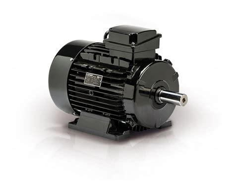 Aeg Electric Motors by Motori Elettrici Trifase Asincroni Ie3 Eisa Lafert Spa