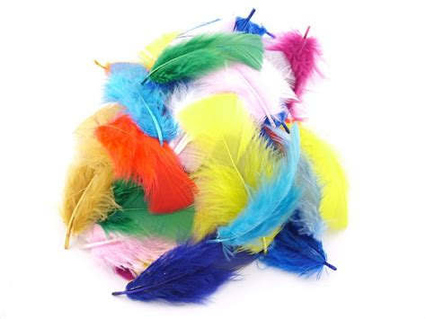 Craft Packs Dyed Turkey Feathers Arts Crafts