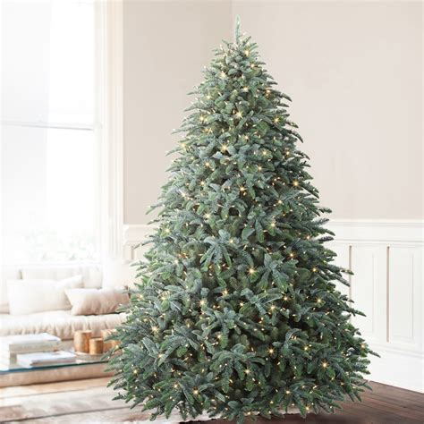 noble fir tree pictures 28 artificial layered noble fir tree 4