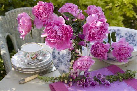garden flower 1280x853px garden flower tulips 379487