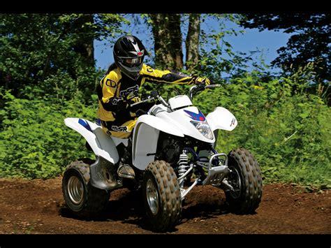 Suzuki Quadsport Z250 by 2010 Suzuki Quadsport Z250