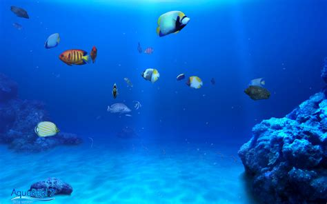 aqua 3d digifish aqua real 3d screen saver ky w lw