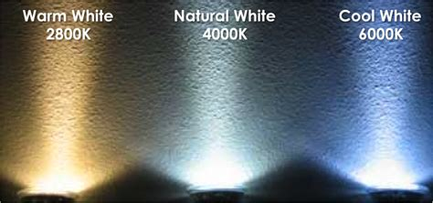 led warm white vs cool white led lights what is the difference between warm white and