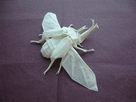 origami bugs origami beetle by shuki kato colossal