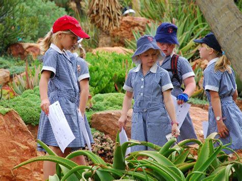 walter sisulu botanical garden walter sisulu national botanical garden things to do in