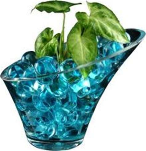 gel for plants water gel plain