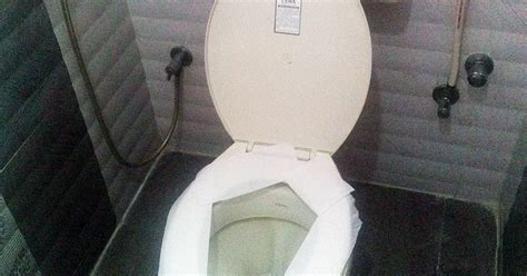 Toilet Paper On Public Toilet Seat by Fact Check You Should Never Put Toilet Paper On A Toilet
