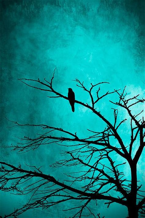 paint nite quotes 25 best ideas about bird tree on tree bird
