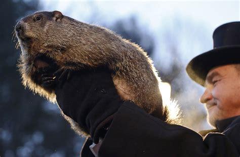 groundhog day of no shadow pennsylvania groundhog predicts early