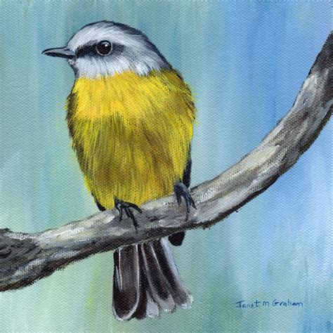 painting birds acrylic eastern yellow robin australian bird wildlife original