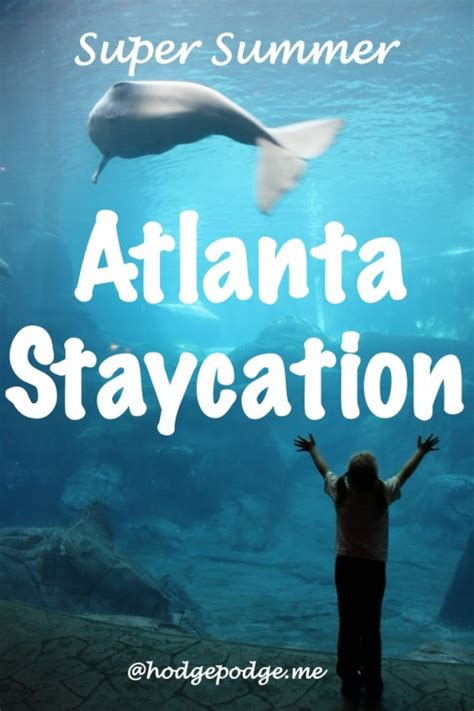 ultimate atlanta summer staycation guide free and frugal family hodgepodge