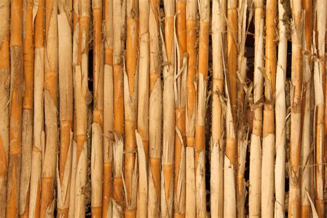 woodworking with bamboo wood texture stick fence bamboo grass stock photo
