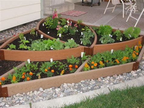 simple vegetable garden ideas for your living amaza design