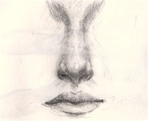 how to draw noses how to draw an nose