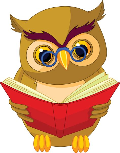 owl picture book pin book owl on