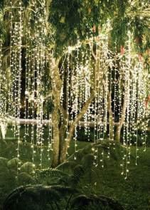 trees with lights and decorations best 25 lights wedding ideas on wedding