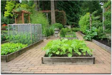home vegetable garden design