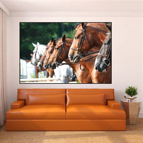 Horse Wall Mural horse wall decal mural animal wall murals primedecals
