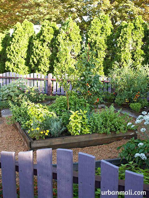 growing vegetable garden tips for growing an organic vegetable garden