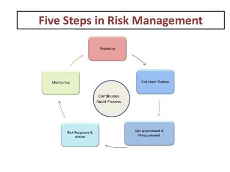 steps in risk management graphical tour projectias