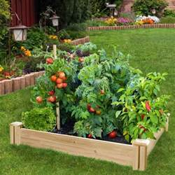 Tomato Plants Growing In The Raised Bed Growing Tomato Elevated Cedar Complete Raised Garden Bed Kit