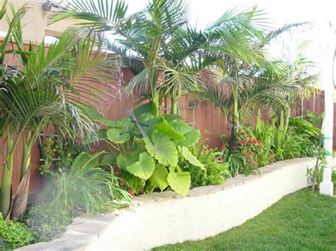 17 best images about landscaping ideas on stunning tropical landscape design 17 best ideas about