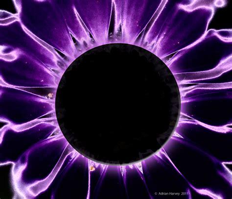 black sun black sun adrian harvey