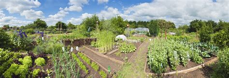 Garden Of Commune Marion Polk Food Oregon Community Gardens Vancouver