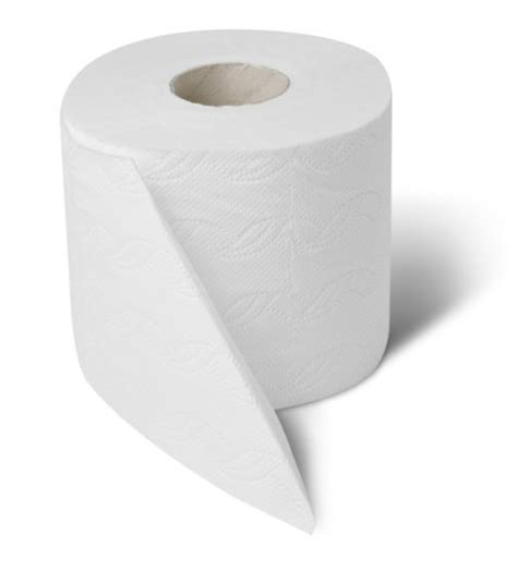 toilet paper roll hygiene handwashing for