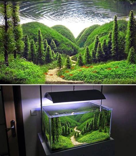d 233 coration aquarium le bon coin