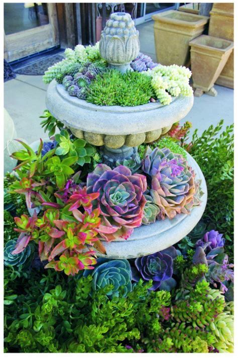 cheap planters 24 cheap planter ideas for amazing succulent garden