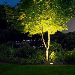 lighting in trees outdoor lighting 101 landscaping lights and outdoor