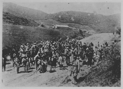 ottoman empire armenian genocide the armenian genocide 1915 16 in depth