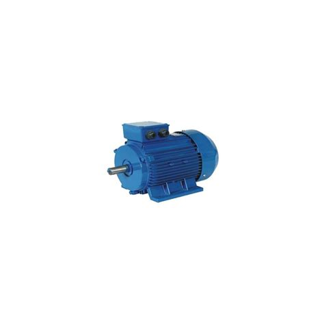 Motor 3 Kw by Three Phase 1450 Rpm Electric Motor 3 Kw Deelat