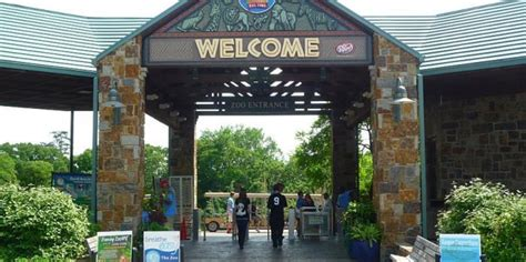 Garden City Zoo Top 10 Best Zoos In The Us Might You